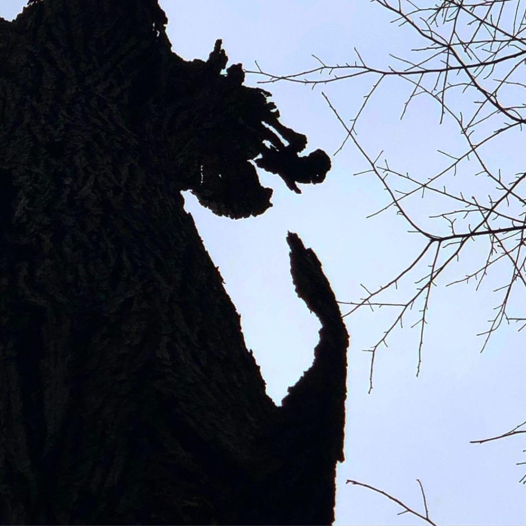 Totem Monster