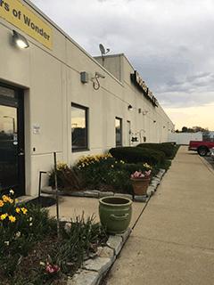 Warehouse Daffodils