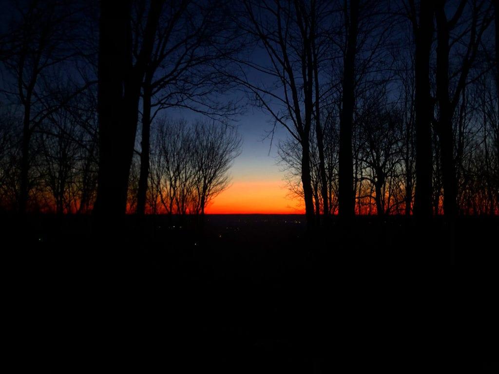 Dawn 01/20