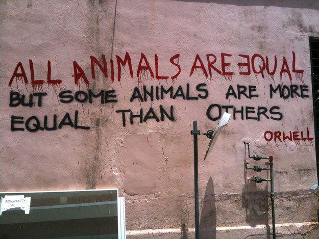 Orwell Quote Singapore