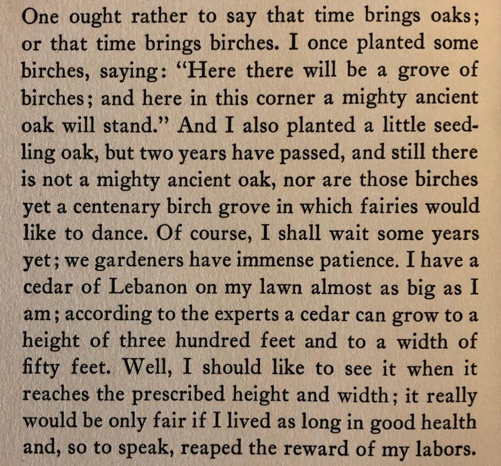 Capek Excerpt