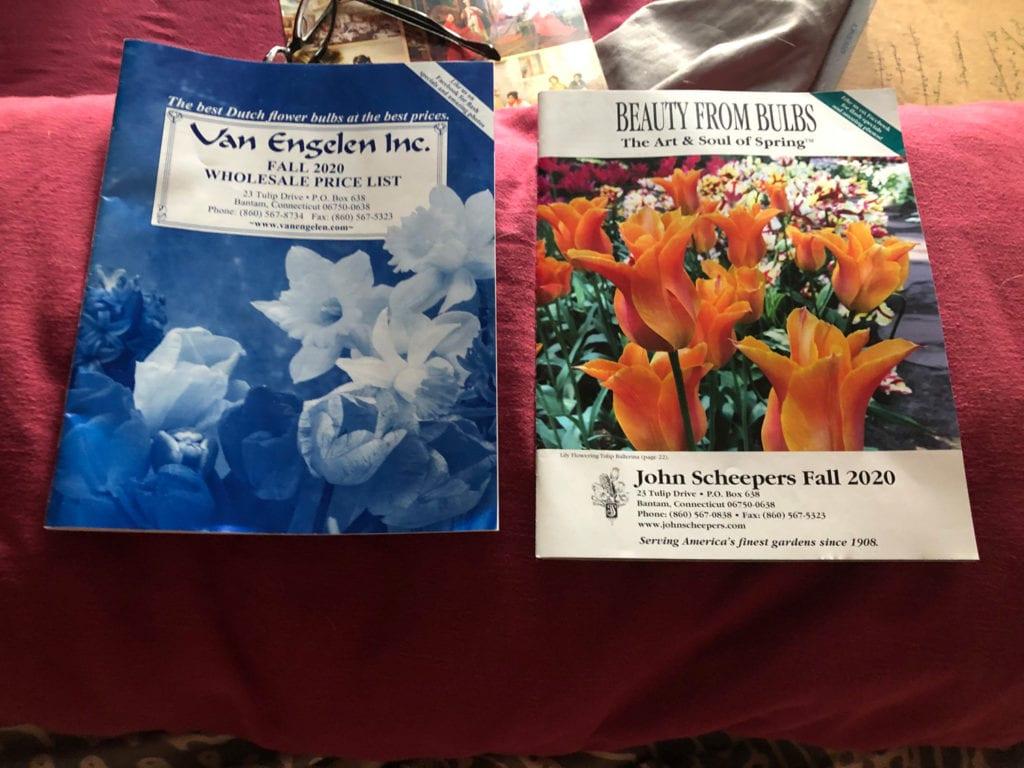 Spring Bulb Catalogs