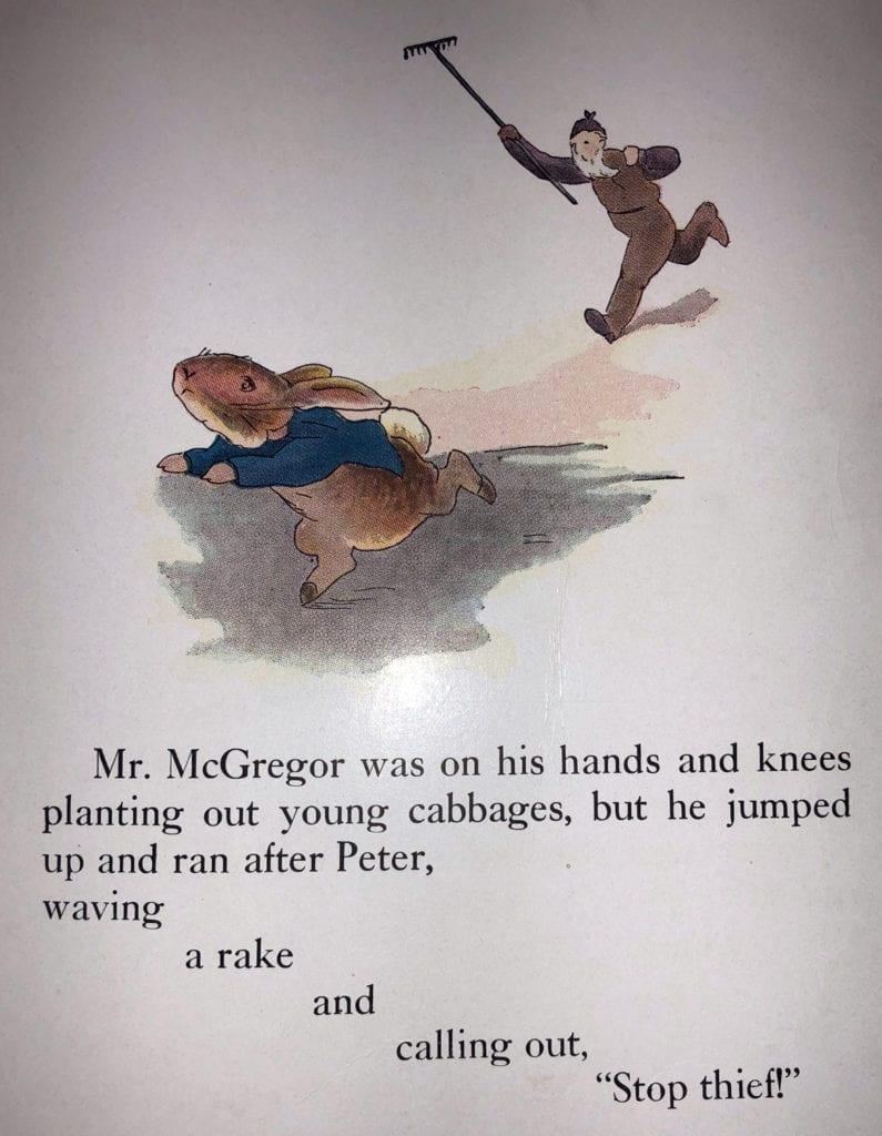Farmer MacGregor
