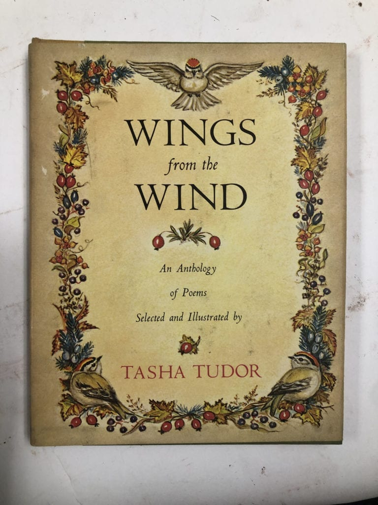 Wings from the Wind