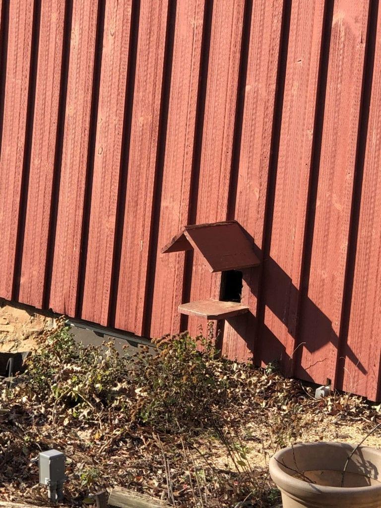 Cat Barn Door