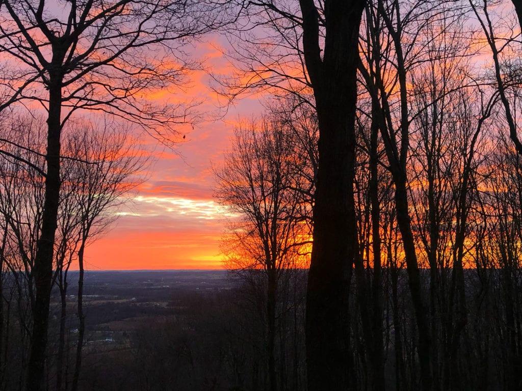 New Year's Dawn