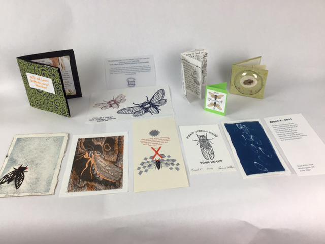 Cicada Swap Books