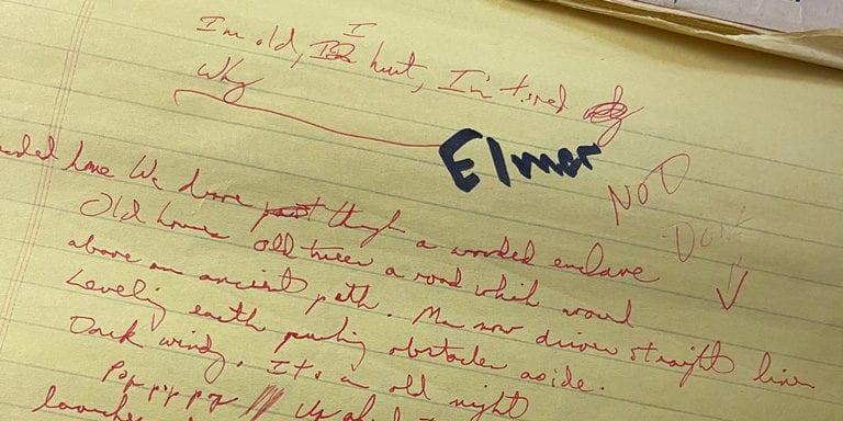 Elmer Story