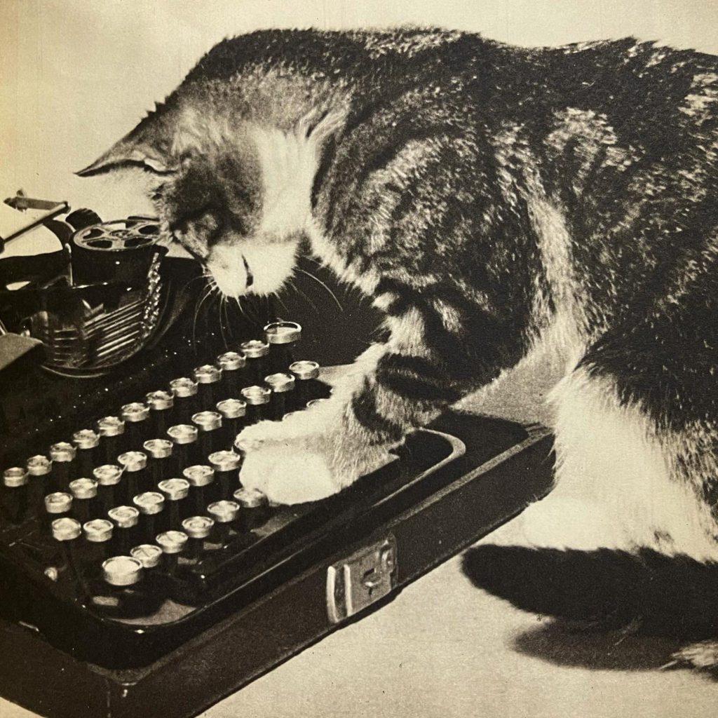 Cat at Typewriter